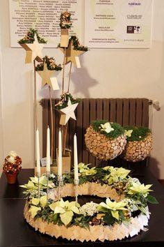 Planten krans, Euphorbia pulcherrima = kerst ster