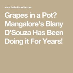 Grapes in a Pot? Mangalore's Blany D'Souza Has Been Doing it For Years!