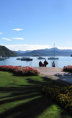 Day 11 - Picton, Top of the South Island, New Zealand