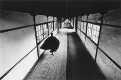 japanesque - zen #08 by ikko narahara
