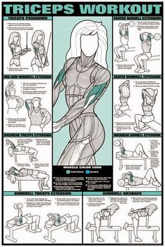 Arm workouts and the muscle used - the wing area