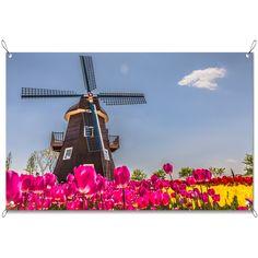 Tuinposter Molen en tulpen   Maak je tuin nog mooier met een weerbestendige tuinposter van YouPri. Bewezen kleurbehoud! #tuinposter #tuindoek #tuin #poster #weerbestendig #kleurbehoud #frontlit #goedkoop #voordelig #spanners #ogen #molen #molens #tulpen #tulpenveld #bloem #bloemen #holland #hollands #nederland