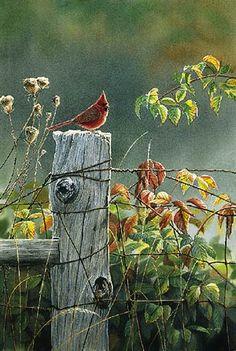 """September Morning"" - by Susan Bourdet"