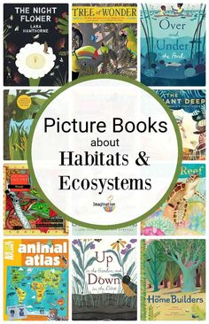 If you're studying ecosystems and habitats, these picture books can help! But, first let's clarify the difference between ecosystem and habitat. Preschool Books, Science Books, Science Activities, Learn Science, Science Fair, Life Science, Computer Science, Pond Habitat, Animal Atlas