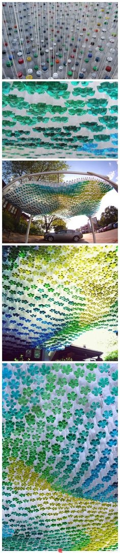 An installation using plastic bottles and colored liquid-- it looks like flowers from below.