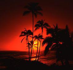 SETTING A NEW GOLD STANDARD / Tahiti sunset /  #ExpediaWanderlust