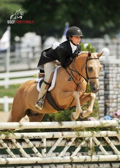 Be Mine ~ Qualified for Pony Finals 2013 and 3500 pts. for indoors - Welsh Pony - Hunter