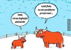 Dacă eşti mare în oo   Link Postare ➡ http://9gaguri.ro/media/daca-e-ti-mare-in-oo