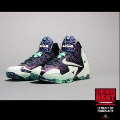 LeBron 11 Gator King