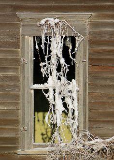 Winter Window Treatment by im pastor rick, via Flickr