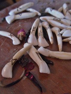 Runes Set - Burned Cow Teeth with Handmade Pouch