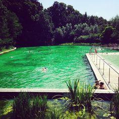 natural swimming pool in Antwerp (Boekenbergpark)