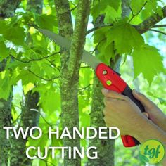 "TGF Pruning SawVery sharp 8"" blade with 7 teeth per inch..."