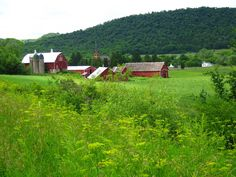 Lee farm and Upper Coon Valley Lutheran Church, Coon Valley, WI