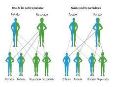 Resultado de imagen para genetica Iron Deficiency Anemia, Genetics, Genealogy, Parenting, East Africa, Cabo, Asia, 1, Type