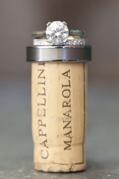 pic w/ the cork from the champagne toast. This would be so cute to hang in your kitchen/wherever you keep your wine! SO glad I saved the cork from our wedding day toast, doing this! Wedding Wishes, Wedding Pics, Wedding Engagement, Our Wedding, Dream Wedding, Engagement Shots, Country Engagement, Winter Engagement, Wedding Bands