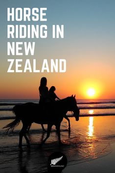 Looking for fun things to do in New Zealand? When you travel New Zealand with kids, you've got to go horse riding! Tap this pin to discover loads of incredible horse riding experiences in New Zealand.