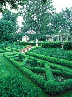 Beautiful boxwood knot garden