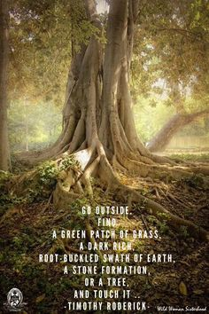 GO OUTSIDE. Find a green patch of grass, A dark rich, root-buckled swath of Earth, A stone formation, Or a tree, AND TOUCH IT .. -Timothy Roderick- WILD WOMAN SISTERHOOD™