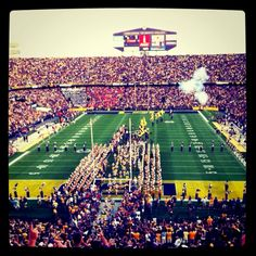 FOREVER LSU!
