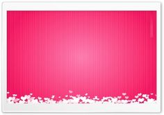 Valentines Day 2012 Pink HD Wide Wallpaper for Widescreen