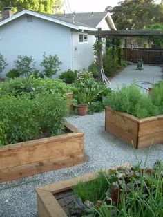 Hill Country Herb Gardens | Grounds And Garden Pond The Lower Pond Herbs  More Herbs | Landscaping | Pinterest | Garden Ponds, Herbs Garden And  Gardens