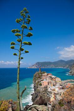 Italy, Liguria, Riviera di Levante, Cinque Terre, Vernazza
