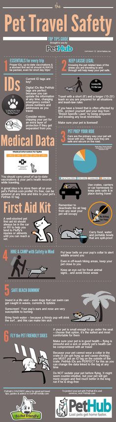 Pet Travel Safety Tips | PetHub  -- plus great advice from GoPetFriendly.com!