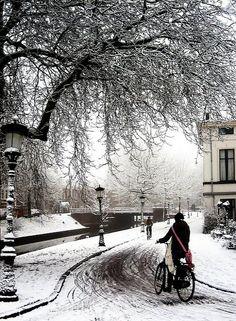 Winter in Utrecht, Netherlands I Love Winter, Winter Is Coming, Winter White, Utrecht, Winter Magic, Winter's Tale, Beaux Villages, Winter Scenery, Snow Scenes