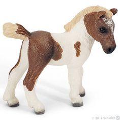 Miniature+Falabella+Foal