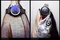 Watches Still Life Photography by Mitchell Feinberg | Trendland: Fashion Blog & Trend Magazine