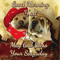 Good morning Y'all, May God Bless Your Saturday.