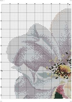Photo Cross Stitch Rose, Cross Stitch Flowers, Embroidery Patterns, Cross Stitch Patterns, Butterfly Flowers, Butterflies, Blackwork, Diy And Crafts, Knitting