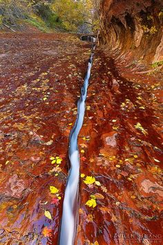 The Fault Line, Zion National Park, Utah. Be sure to include this interesting spot on your Utah travel itinerary.