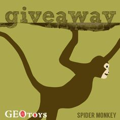 Don't miss out on entering our @GeoToys Giveaway! Answer the Question and Share this post to be entered to win a GeoPuzzle!  Spider Monkeys live high in the canopy of the rainforest. If you had the chance, what animal would you interact with in the rainforest?
