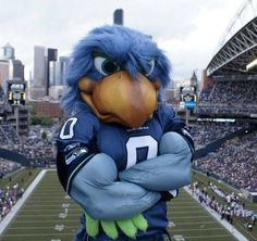 The Seattle SeaHawks Mascot.The SeaHawks Blitz! Seahawks Stadium, Seahawks Fans, Seahawks Gear, Seahawks Merchandise, Seattle Mariners, Seattle Seahawks, Denver Broncos, American Football, Sports