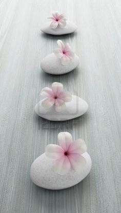 Frangipani Flower On White Stone, Zen Spa On White Wood Stock Photo, Picture And Royalty Free Image.