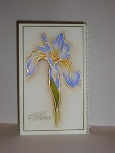 handmade thank you card ... clean and simple design ... realistic iris fills the card ... shiny white heat embossed lines ... watercolor float coloring ... luv the shadowing in sienna  outside the image ... sweet border punched edging ... beautiful!