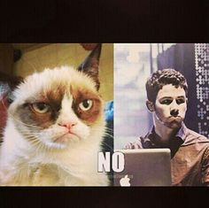 Nick Jonas and Grumpy Cat