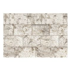 Wallpops Birch Bark Wall Mural ($125) ❤ liked on Polyvore featuring home, home decor, wall art, wall murals, wall panels, mounted wall art and home wall decor