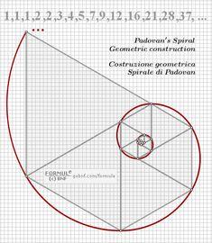 Geometric Drawing, Geometric Art, Fibonacci Sequence In Nature, Fibonacci Golden Ratio, Spiral Art, Sacred Geometry Tattoo, Physics And Mathematics, Math Formulas, Design Theory