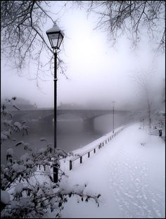 The foggy morning gave me hope. Maybe I could leave undetected. The snow was slushy, melting enough to obscure my steps. If I could just make it to the other side of the bridge, my life would change forever.