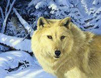 Linda Picken Art Studio - Wildlife Gallery