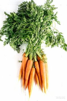 fresh food photography carrots