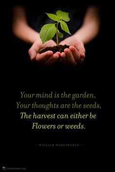 "Mental health, promoting peace, loving others ""Your mind is the garden, your thoughts are the seeds, the harvest can either be flowers or weeds"""