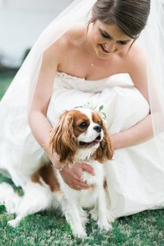 wedding dog! | Elisabeth Carol