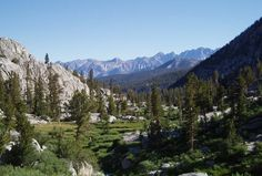 Kings Canyon National Park - Califórnia