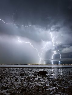 We had a fantastic lightening storm last nite, Aug Booms, low rumbles, actual lightening bolts (not the typical sheet lightening). Haven't had a good one in SW Puget Sound for years. a really good picture of an amazing set of lightning strikes. All Nature, Science And Nature, Amazing Nature, Natural Phenomena, Natural Disasters, Exposure Photography, Nature Photography, Scenic Photography, Landscape Photography