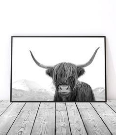 Modern black and white art print for your home - Highland Cow Print by Little Ink Empire. Cow Wall Art, Metal Tree Wall Art, Large Wall Art, Scandinavian Poster, Design Scandinavian, Art Prints For Home, Wall Art Prints, Highland Cow Art, Highland Cattle