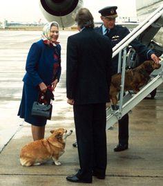 Peanut butter and jelly.ChrissyTeigen andJohn Legend.Queen Elizabeth II and her Corgis. Some ...